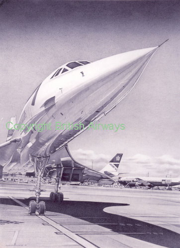 pencil artistry by alan stammers enlarged concorde drawing